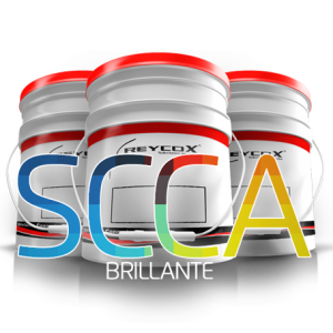 scca-bri-reycox